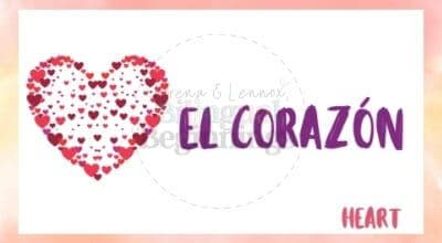 Valentine's Day Printables in Spanish- el corázon flashcard