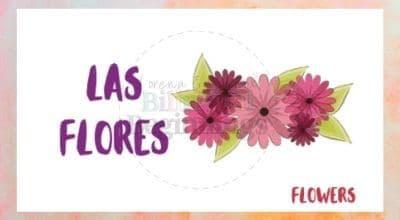 Valentine's Day Printables in Spanish-las flores flashcards