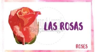 Valentine's Day Printables in Spanish-las rosas flashcard