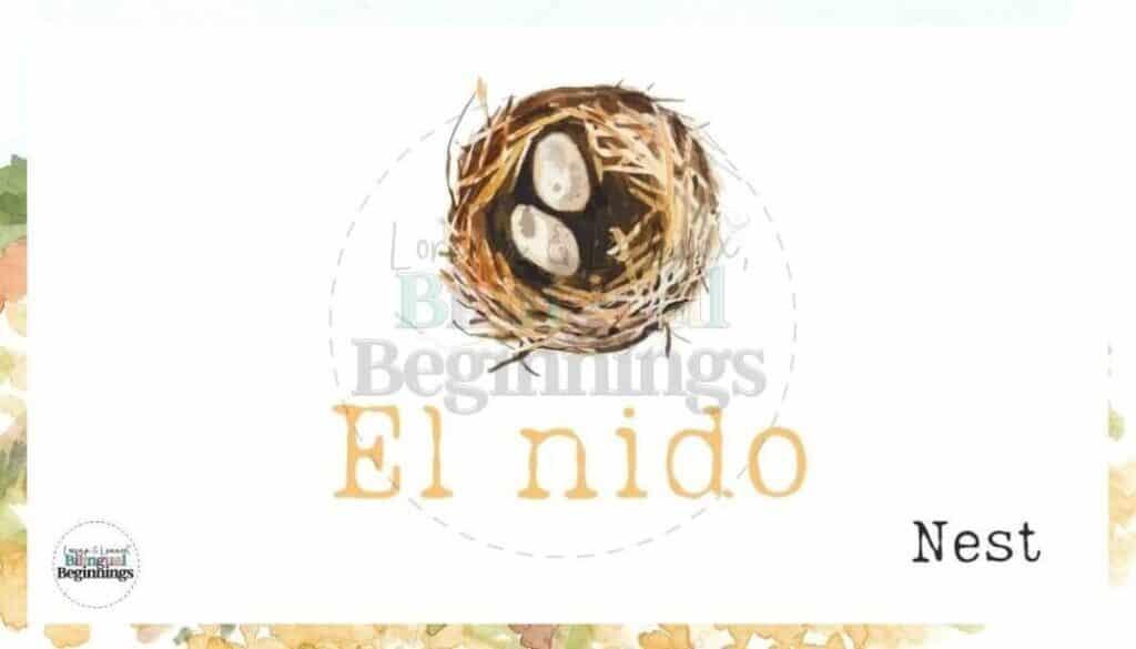 20 Free Printable Spring Vocabulary Flashcards in Spanish
