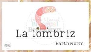 Los Pollitos Dicen Nursery Rhyme Flashcards- La lombriz