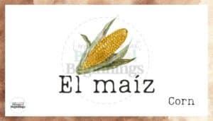 Los Pollitos Dicen Nursery Rhyme Flashcards- El maiz