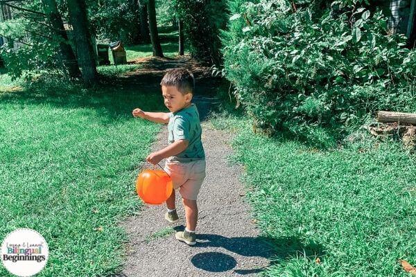 Fall Toddler Bucket List
