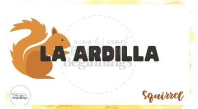 Fall Vocabulary Flashcards in Spanish For Kids