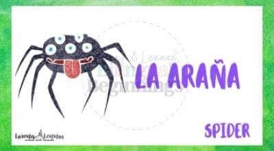 Halloween Printables in Spanish- Halloween Vocabulary Flashcards- El murciélago- La araña