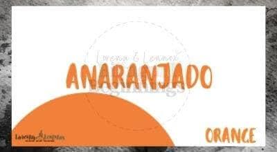 Halloween Printables in Spanish- Halloween Vocabulary Flashcards-orange
