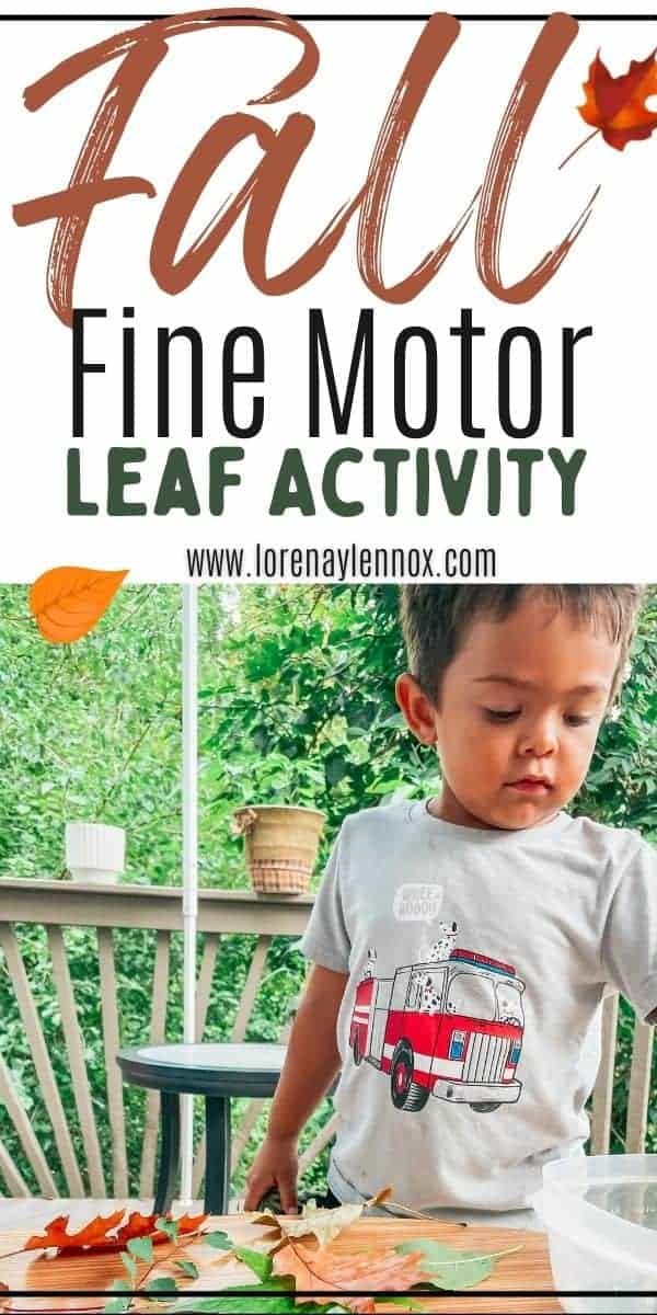 Today I want to share an educational, sensory, and fine motor leaf imprint activity for toddlers and preschoolers to get your kiddos outdoors and in touch with nature this fall!