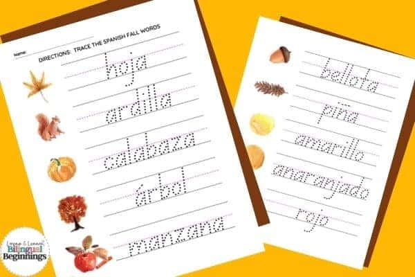 Two fall word tracing worksheets in Spanish for preschoolers and kindergarteners This is a great literacy activity for beginner writers.